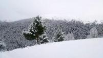 Gümüşhane'ye 6 Mayıs'ta kar yağdı