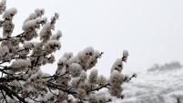 Gümüşhane'ye Nisan ayında beyaz sürpriz