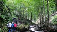 Gümüşhaneli Dağcılar Örümcek Ormanlarında Yürüdü