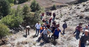 Cevizden düşen kadını bir kilometre sedyede taşıyarak ambulansa ulaştırdılar