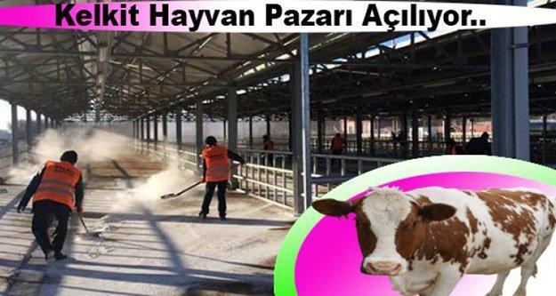Kelkit'in Hayvan Pazarı yeniden açılıyor