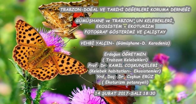 Gümüşhane kelebekleri Trabzon'da konuşulacak