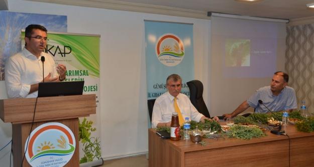 Doğu Karadenizin Tıbbi Bitki Hazinesi Keşfediliyor