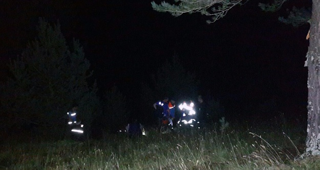 Sığındığı ağaca yıldırım isabet eden çoban öldü