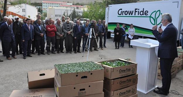 Çiftçilere 50 bin fide dağıtımı yapıldı