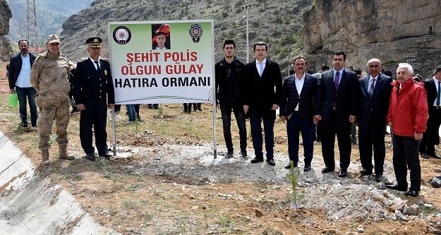 Gümüşhanede şehit polis Olgun Gülay anısına hatıra ormanı oluşturuldu