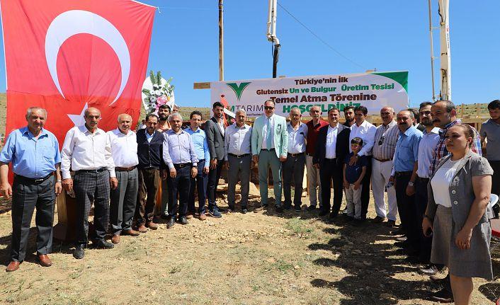 Türkiye'nin ilk glütensiz un ve bulgur tesisi Gümüşhane'ye kuruluyor