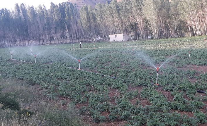 Gümüşhane'de 116 bin 980 dekar tarım arazisi sulandı