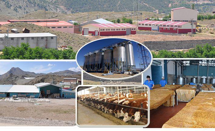Kırsal Kalkınma Yatırımları ile Gümüşhane'ye 58 proje kazandırıldı