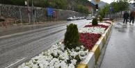 Gümüşhane Belediyesi peyzaj çalışmalarına devam ediyor