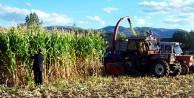 Çiftçiler dikkat! Destekleme başvuruları başladı