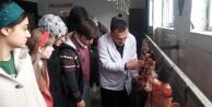 Fen Lisesi öğrencileri Mezbahanede