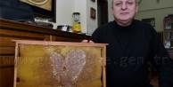 Gümüşhane'de Arılar Aşka Geldi