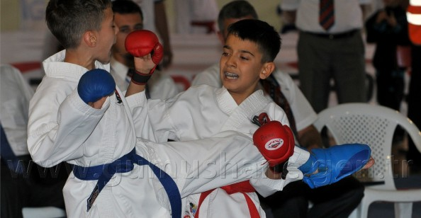 Türkiye Minikler Karate Şampiyonası