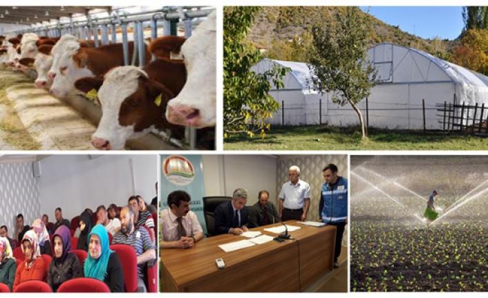 Gümüşhane'de 156 Genç Çiftçiye hibe desteği verilecek