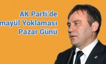 AK Parti de Temayül Yoklaması Pazar Günü