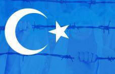 'Heryer Türkistan Hergün Direniş'