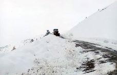 Gümüşhane'de karla mücadele çalışmaları devam ediyor