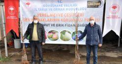 Gümüşhane'de üreticilere 4 bin adet yerli meyve fidanı dağıtıldı