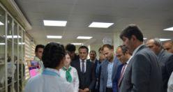 Torul Şehit Tamer Özdemir Anadolu Lisesi'nde 4006 Tübitak Bilim Fuarı