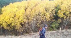 Gümüşhaneli dağcılar sonbaharın tadını çıkarmaya devam ediyor