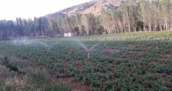 Gümüşhane'de 2020 yılında 113 bin 800 dekar tarım arazisi sulandı
