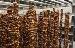 Dut'un ceviz ve fındığa olan sevdasının ürünü: Pestil ve köme