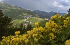 Zigana Dağında renk cümbüşü