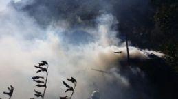 Torul'da yangın