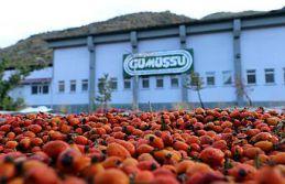 Fabrikanın bahçesi kırmızı renge büründü