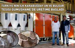 Türkiye'nin ilk karabuğday un ve bulgur tesisi...