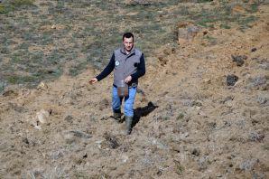 Gümüşhane'de tarlalar yaban hayatı için ekiliyor