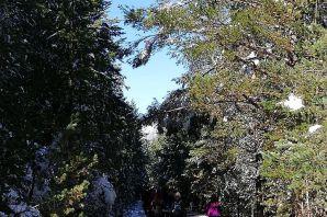 Gümüşhaneli dağcılar Zigana'da sonbahar ve kışı bir arada yaşadı
