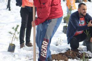 TEMA 500 fidanı toprakla buluşturdu