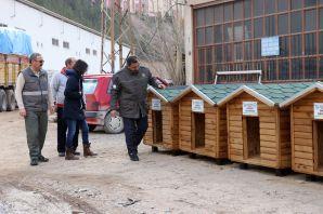 Gümüşhane'de sokak hayvanlarına beş yıldızlı kulübe yapıldı