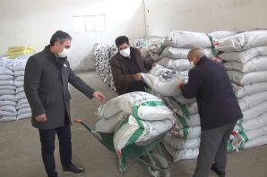 Gümüşhane'de üreticilere 160 ton yem bitkisi tohumu dağıtıldı