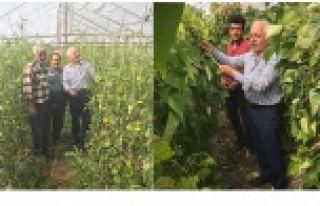 'Yerli ve doğal ürünlerimizi şehrimizin ekonomisine...