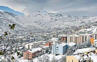 En fazla Gümüşhaneli İstanbul'da yaşıyor
