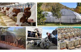 Gümüşhane'de 162 Genç Çiftçiye 4,9 milyon...