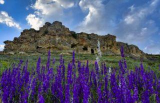 Şiran'ın Sümelası restore ediliyor