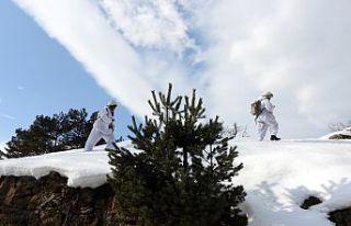 Gümüşhane dağlarında kış operasyonları devam...