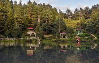 Gümüşhane'nin turizm mekanları bayram tatilinde...