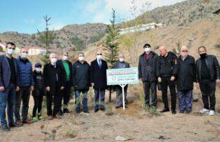 Sohta Sinan Vakfı'ndan GÜ'ye 4 bin fidan bağışı