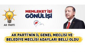 İşte AK Parti'nin meclis adayları