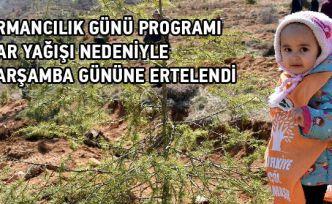 Dünya Ormancılık Günü programı ertelendi