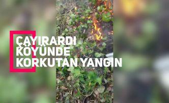 Gümüşhane'de orman içi örtü yangını korkuttu