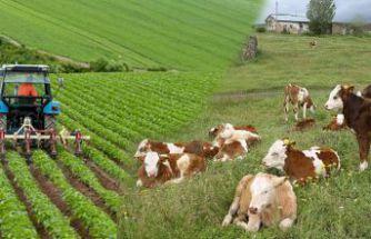 Çiftçilerin 9,1 milyon TL'lik destekleme ödemeleri başladı