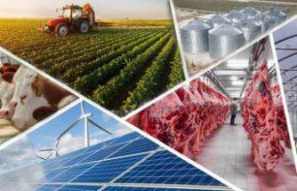 Tarıma Dayalı Yatırımların Desteklenmesine Yönelik Hibe Başvuruları Başladı