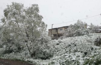 Gümüşhane'nin yükseklerinde kar yağışı etkili oluyor