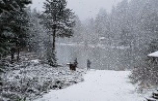 Gümüşhane'nin yüksek kesimlerine lapa lapa kar...